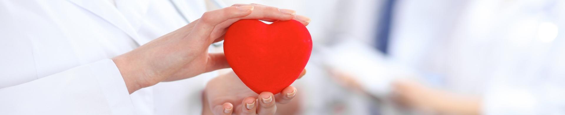 القلب والأوعية الدموية